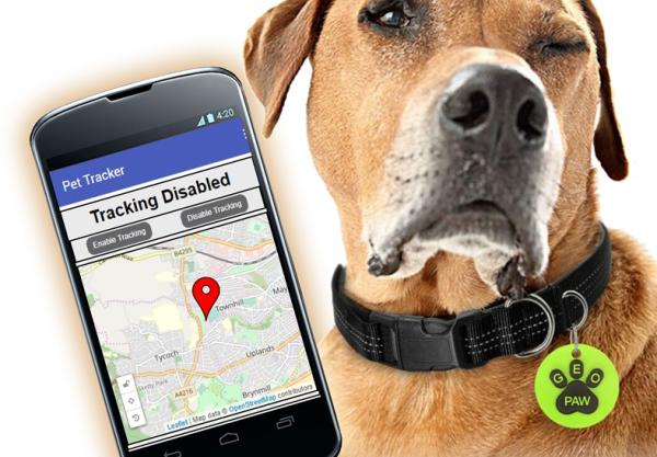 Tracker for pesky pets a hit for IT students